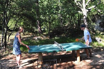 Relaxing-Holiday-at-Bois-dAmont-Table-Tennis