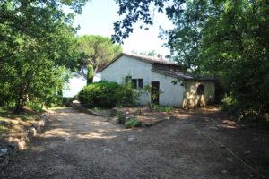 illa-Rental-Provence-Mas-du-Chene-Back
