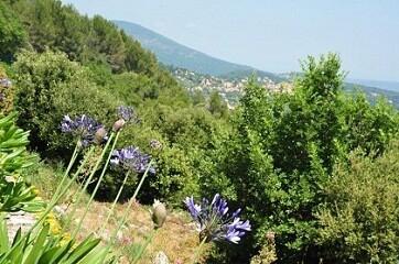 Panorama walk flowers and Cabris